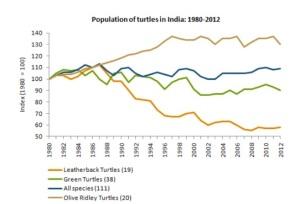 ielts line graph turtles1